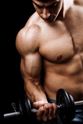 ernaehrungsplan muskelaufbau trainingplan rezepte kostenlos als pdf