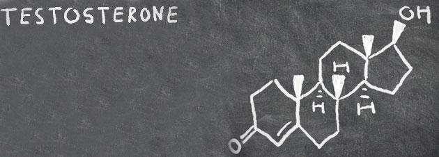 Mit diesen 10 Lebensmitteln steigerst Du Deinen Testosteronwert