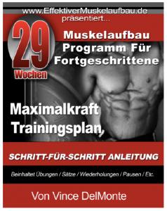 29 Wochen Maximalkraft Trainingsplan