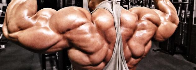 Eiweißreiche Ernährung für Bodybuilder