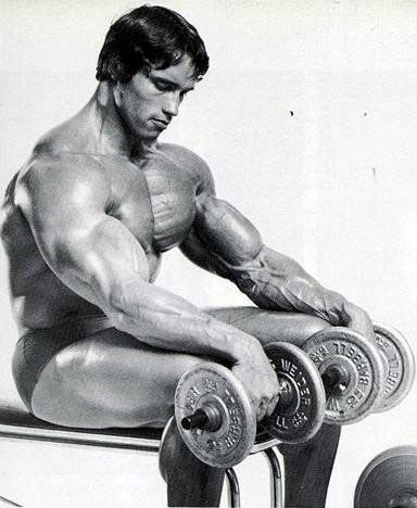 Muskelaufbauübung im Sitzen