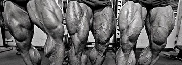 5 Schritte für großartige Beine