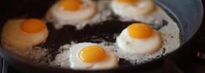Unterstützen Hühnereier den Muskelaufbau?