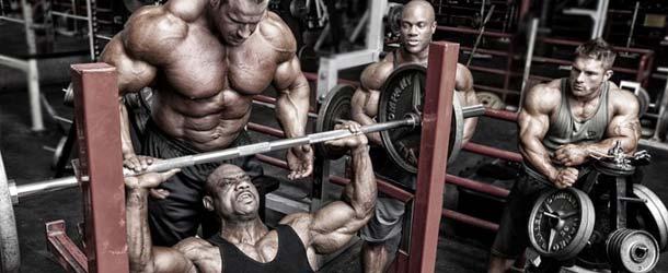 Was ist besser für den Muskelaufbau: Langhantel oder Kurzhantel?