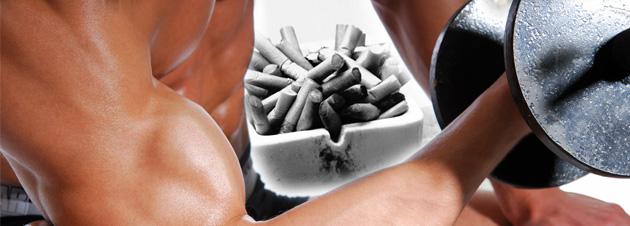 Verhindert Nikotin den Muskelaufbau?