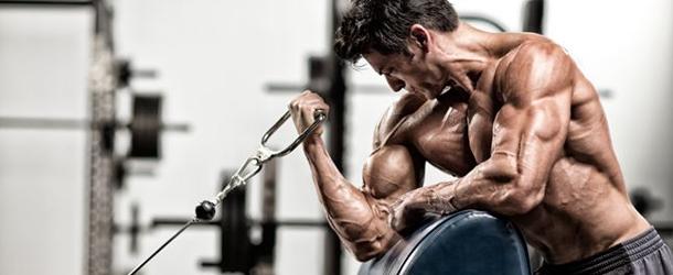Wieso sind Muskeln sexy?