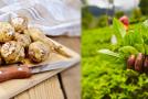 Diese 5 Nahrungsmittel helfen dir beim Abnehmen